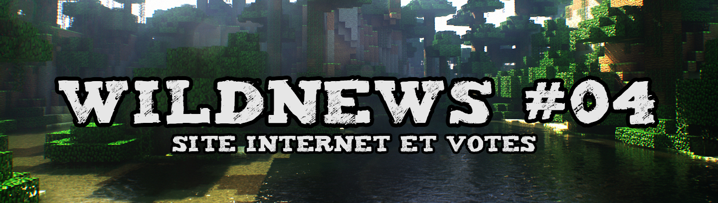 WildNews #04 - Site Internet et Votes